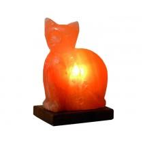 Lampe en sel Chat