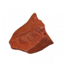 Jaspe rouge brut