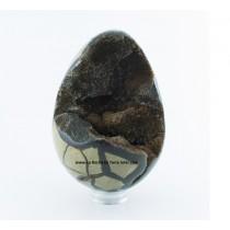 Septaria sauvage œuf poli